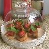 Бомбочки из моцареллы и пармезана с помидорами черри