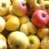 Яблочная галета на трех видах муки