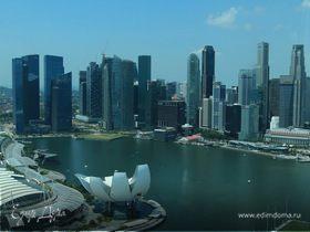 Моя Сингапурская сказка