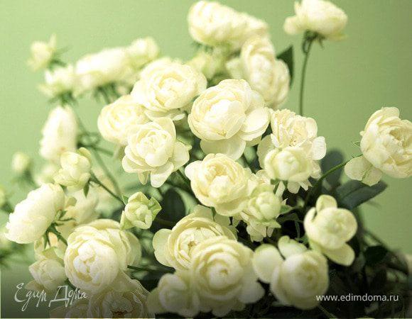 Жанночка Тихонова, с днем рождения!!!