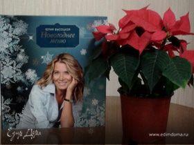 Книга «Новогоднее меню»
