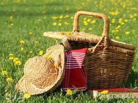 Статья: 10 лайфхаков для закрытия сезона пикников