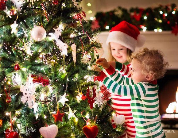 Выбираем и наряжаем новогоднюю елку