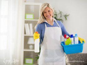 Экосредства для дома на страже чистоты и здоровья