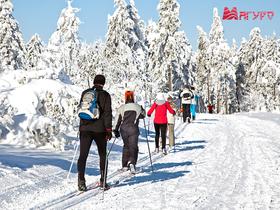 Новые старты: как правильно заниматься бегом на лыжах