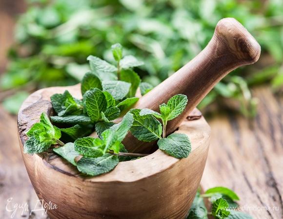 Свежо, легко и зелено: что приготовить с мятой на каждый день