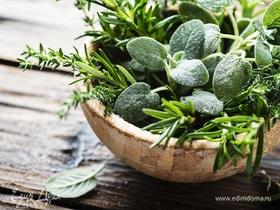 Букет здоровья: 7 видов самой полезной зелени