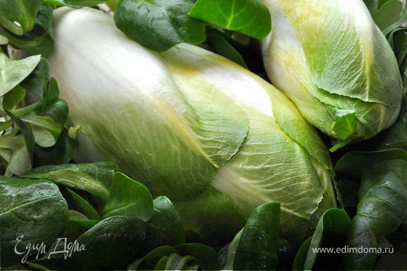 Итак, цикорий. Приготовленный таким образом этот замечательный овощ поразит Вас своим насыщенным пикантным вкусом. Уверен, что Вы его полюбите! Нам понадобится белый цикорий, среднего размера, а также салат корн или по-другому овощная валериана для подачи. Поэтому хорошенько все промоем проточной водой и обсушим полотенцем.