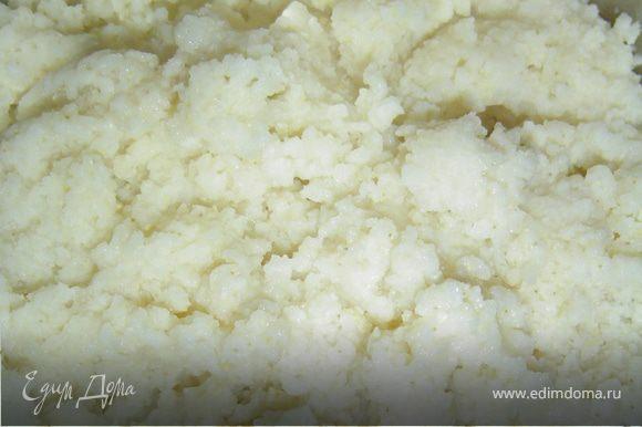 Варим пшенную кашу,в кастрюлю наливаем 1 стакан воды,солим и доводим до кипения,в воду кладем промытое пшено и варим, пока пшено не вберет всю воду.Нарезаем мелко лук, а грибы небольшими кубиками и обжариваем на небольшом кол-ве растительного масла.Соединяем грибы с пшенной кашей, солим по вкусу и перемешиваем.В Большом кол-ве подсоленной воды отвариваем ракушки до полуготовности.Ракушки немного остудить, а затем нафаршировать пшенной кашей. Ракушки выкладываем на противень, в который предварительно налили овощной бульон, немного растительного масла, добавили итальянские травы, лимонный перец, соль, а также измельченный зубок чеснока. Ракушки сбрызнуть растительным маслом, и отправить в духовку на 15-20 минут при температуре 170 гр. Подаем горячими, посыпав измельченной зеленью.