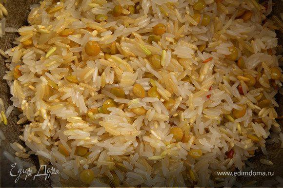 Рис. Смешать пропареный рис, дикий, нешлифованный и чечевицу (пропорция 1:0,5:0,5:0,5), промыть. залить водой (в 2.5 раза больше, чем риса). Добавить заправку.