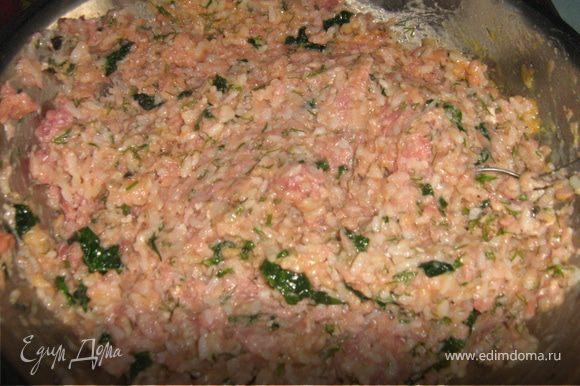 Добавить в фарш шпинат с луком, мелко нарубленный укроп, рис, взбитое яйцо, соль, перец, хорошо перемешать.