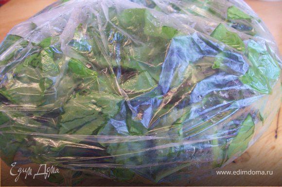 Вариант №2 Щавель нарезаем и свежим укладываем в пакет...(норма щавеля на небольшую кострюлю супа около 200 гр)... кладем в морозилку. В морозильной камере щавель может храниться до года.