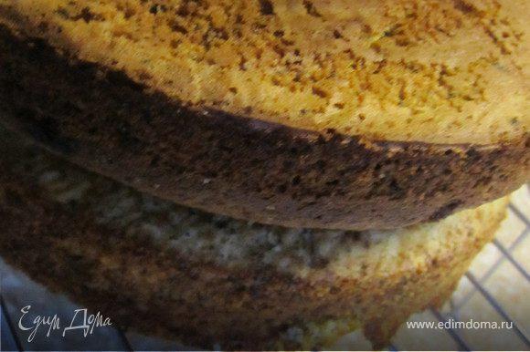 духовку разогреть до 180 гр. Форму (24 см) застелить пергаментом. Выложить тесто. Выпекать 35-40 минут. Охлажденный бисквит разрезать на 4ре коржа.