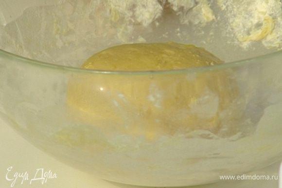 Положить тесто в посуду, смазанную растительным маслом, затянуть пленкой и поставить в теплое место на час.