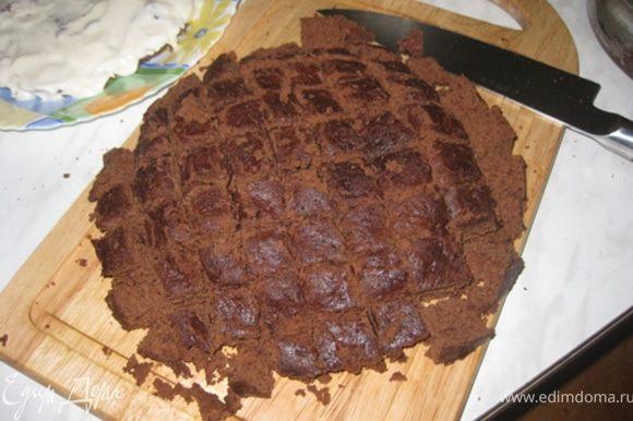 Разрежьте бисквит на 2 части. Основа должна быть примерно 1,5 см высотой. Остальное нарежьте кубиками.