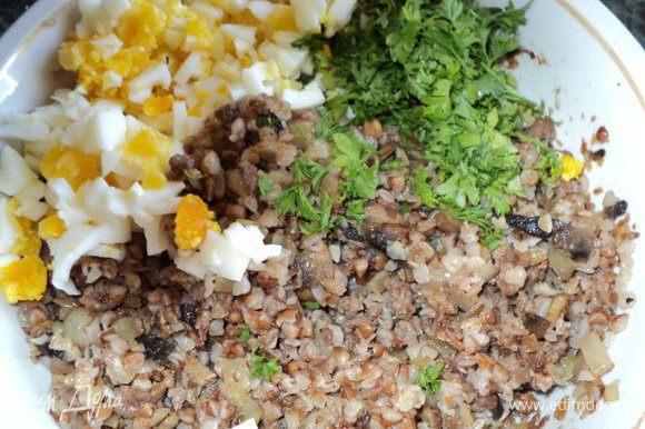 Яйца отварить, очистить. Яйца и петрушку мелко порезать. Соединить гречневую кашу, поджаренные грибы с фаршем, яйца, зелень, перемешать.