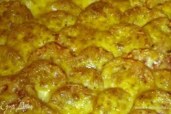 """Выкладываем сначала маринованное мясо. Обильно посыпаем луком. Далее """"чешуйками"""" выкладываем кружки картофеля, слегка солим заливаем оставшейся сметаной. Поверх картофеля так же выкладываем нарезанные помидоры. Обильно посыпаем натертым сыром. Готовить в разогретой до 200С духовке 35-40 минут. Приятного аппетита!"""
