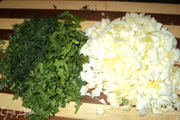 Мелко порезать вареные яйца, укроп и петрушку.