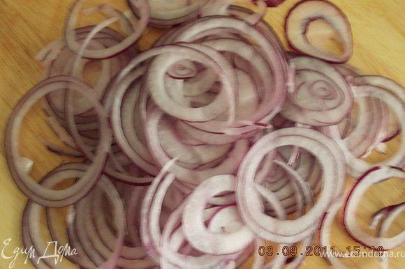 лук нарезать тонкими кольцами