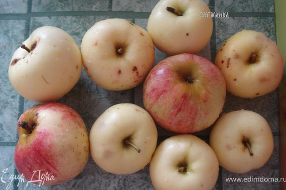 Так как яблоки у меня были небольшие, взяла столько.