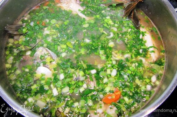 Теперь очень важно не переварить рыбу Рыба должна вариться НЕ БОЛЕЕ 20 минут. Поэтому в первую очередь кладите картофель. Через пять минут - рыбу, пшено, лавровый лист перец горошком. Еще через 15 минут - положите морковь и чайную ложку томатной пасты. Посолите и попробуйте на вкус. Досолите, если необходимо. Через 5 минут положите зелень и выключите огонь. Дайте постоять минут десять под закрытой крышкой. Поперчите черным перцем непосредственно в тарелке для придания дополнительного аромата.