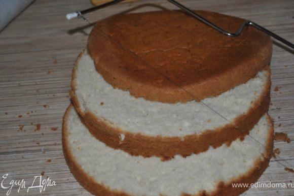 Испечь бисквит по Вашему любимому рецепту (у меня 6 яиц, 1 ст.сахара, 1 ст. муки). Остудить. Разрезать вдоль на 3 части.