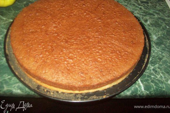 Тесто выложить в форму для выпекания (форму смазать маслом или выложить бумагой для выпекания) и выпекать в разогретой духовке при 160-170 градусах до золотистого цвета ~25 минут.