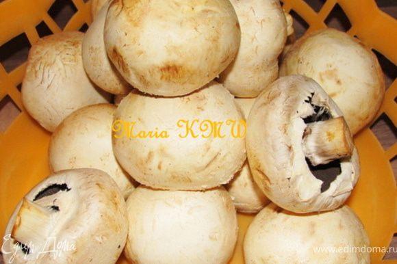 Почистить грибы, лучше всего они очищаются специальной кисточкой или влажной салфеткой. И порезать тонкими пластинками.