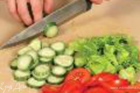 Листья салата промыть, обсушить и крупно нарвать. Помидоры и огурцы вымыть. Помидоры нарезать тонкими дольками, огурцы – кружками.