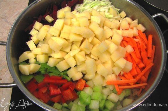 Теперь выложите в кастрюлю все остальные овощи, чеснок. Хорошо перемешайте.