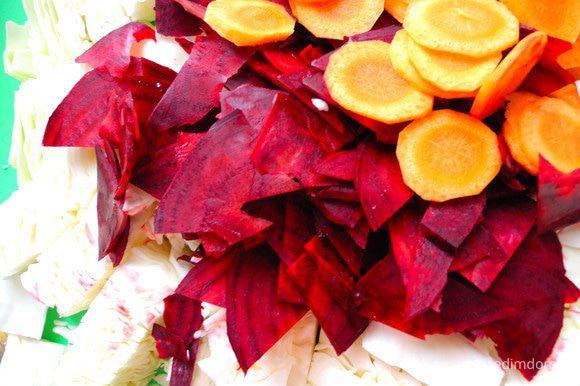 Свеклу и морковку очистить, нарезать морковь кружочками, а свеклу ломтиками. Капусту нарезаем на крупные кусочки. Чеснок нарежем пластиночками поперек.