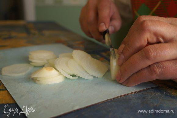 Очистить луковицы, порезать колечками.