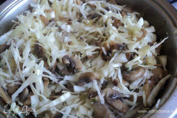 Капусту порезать мелкой соломкой, добавить к грибам и потушить под крышкой 10 мин. Затем добавить сметану, соль, перец, кориандр по вкусу и потушить 5 мин.