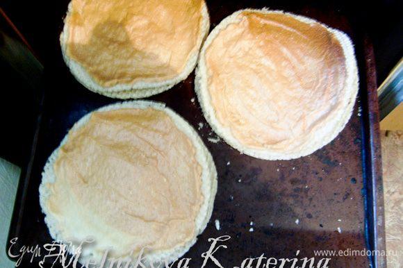 Сперва необходимо подготовить часть вафельных коржей. Для этого нужно взбить белки в пену. Добавляя по чайной ложке сахар, взбить до крепких пиков. Смазать белковой массой три вафельных коржа. Выложить коржи на противень. Выпекать 1 час при 80 градусах. Коржи по краям немного изогнутся, но это не страшно, в торте они быстро выпрямятся. Коржи остудить.