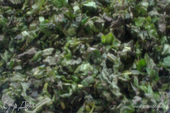 Часть крапивы можно насушить,оставив в больших блюдах и переворачивая до полного высыхания.