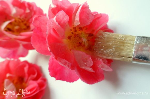 белком аккуратно обмазываем при помощи кисточки розы