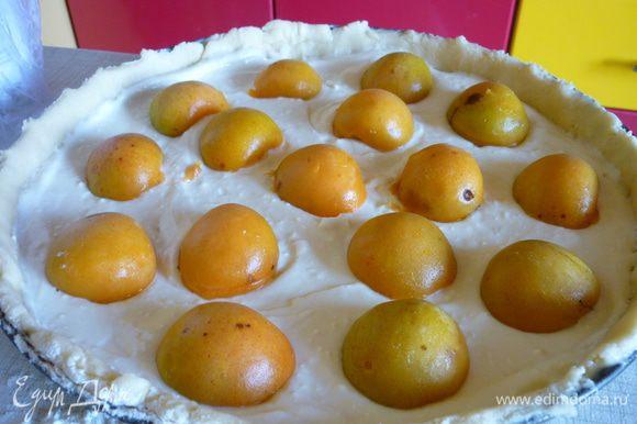 Тесто раскатать, переложить в форму, сформовать бортик, сверху выложить крем и абрикосы.Выпекать пирог минут 30-40.