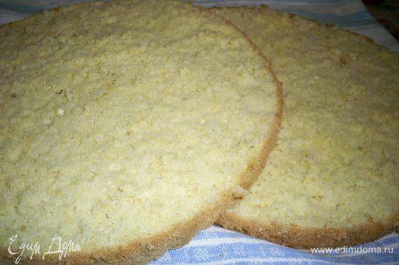 Выпекаем бисквит по рецепту http://www.edimdoma.ru/retsepty/44825-klassicheskiy-biskvit-gotovim-v-domashnih-usloviyah. Даем ему остыть и разрезаем на два коржа.