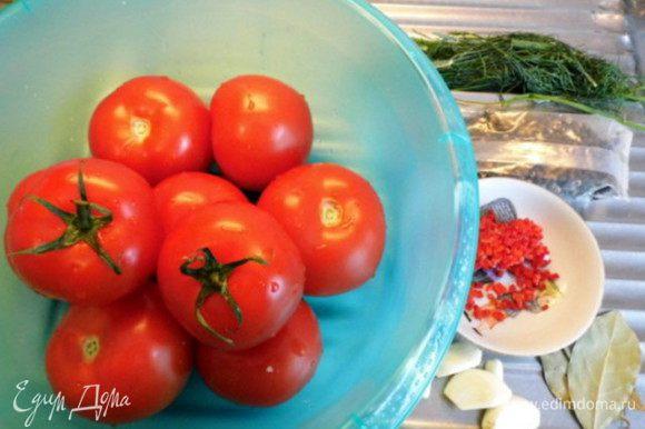 Приготовить все ингредиенты к посолу: помидоры и зелень вымыть, чеснок почистить, острый перчик очистить от семян и мелко нарезать.