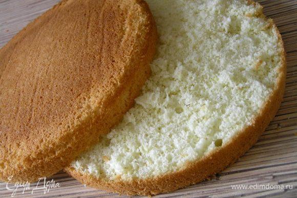 Бисквит приготовить по рецепту http://www.edimdoma.ru/retsepty/40614-idealnyy-biskvit Готовый бисквит разрезать на 2 коржа.