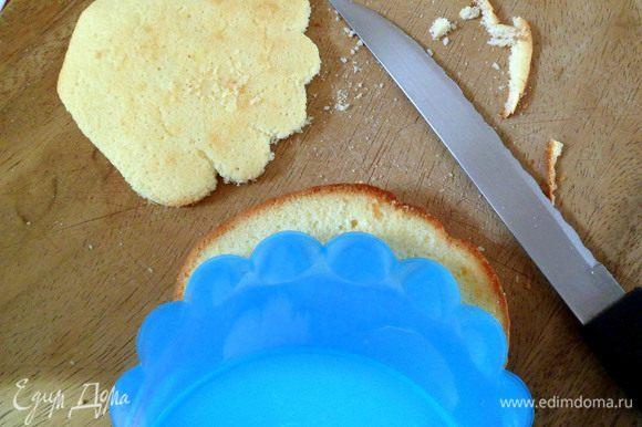 Затем при помощи острого ножа вырезаем очертания ракушки.