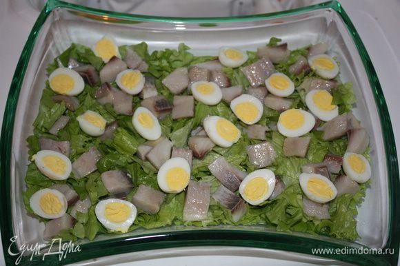 Яйца чистим и режем напополам. Выкладываем на селедку и салат.