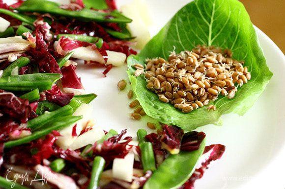 На тарелку на лист щавеля или салата выкладываем пророщенные зерна пшеницы.