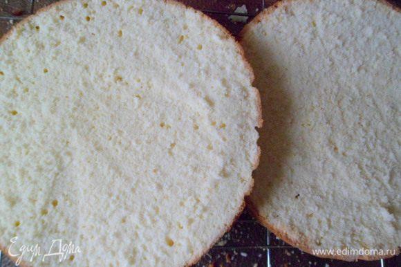 Затем испекшийся бисквит остужаем на решетке. Теплым разрезаем бисквит пополам и даём полностью остыть.