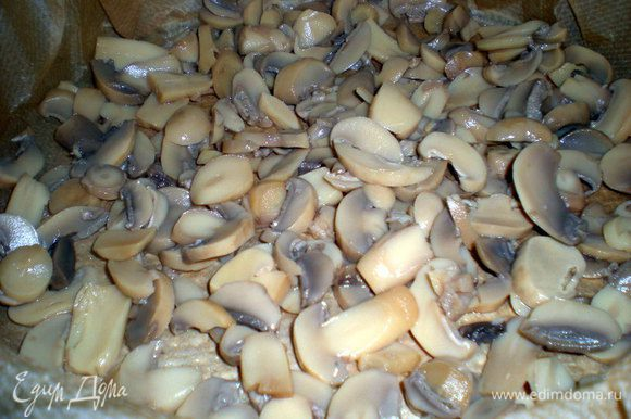 На дно формы выкладываем грибы.