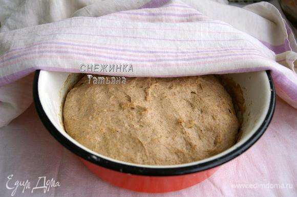 Оставляем тесто в тёплом месте увеличиться вдвое, прикрыв полотенцем.