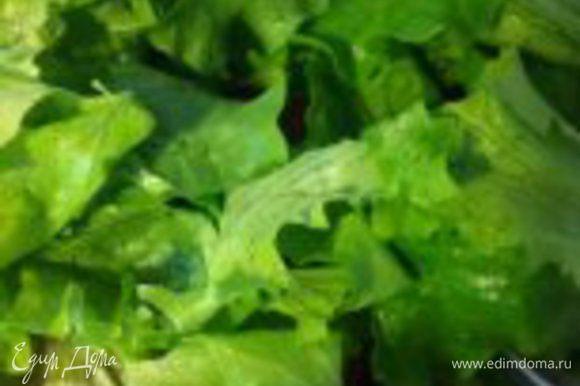 листовой салат моем, обсушиваем бумажным полотенцем, рвем руками и кладем в салатницу...