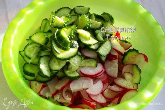 Овощи и зелень моем. Огурцы и редиску нарезаем полукольцами.