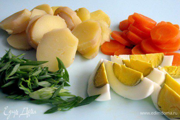 Морковь и картофель нарезать тонкими кружками, яйца дольками. Лук измельчить.