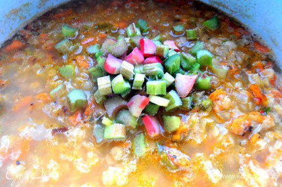 И добавляем в похлёбку...Варим ещё минут 10! Выключаем и даём настояться под крышкой несколько минут...Тогда ревень равномерно отдаст всю свою кислинку супу.